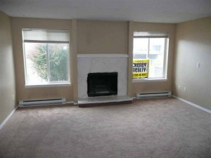 Fireplace and Baseboard Heating